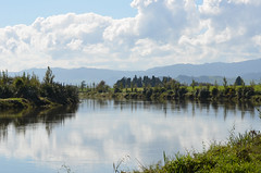 """Tranquility"" (bevanwalker) Tags: river flooding high rain mountains land hills farming paeroa landscape"
