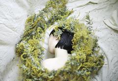 mimoza×women (eripope) Tags: women mimoza female girl flower yellow asian japanese model