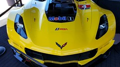 IMSA Sports car Race @ Circuit of Americas (karmenbizet73) Tags: 22365 imsa sports sportscars racing rubbingisracing checkeredflag fourwheeledtalent cota circuitoftheamericas corvettes audi ampitheater tower racefangirl eyespy eyespyauto 2017365photos photographery photodevelopment amateurphotographer art