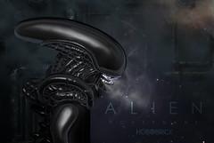 It's Alien!!!!