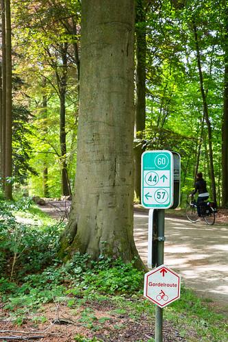 VlaanderenGroeneGordel_BasvanOort-213