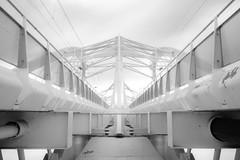 Symmetric Amsterdam (frank_w_aus_l) Tags: bridge amsterdam monochrome d800 nikon symmetry architecture noordholland niederlande nl bw blackandwhite blacknwhite noiretblanc