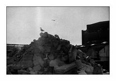 Lorient, zone portuaire (Punkrocker*) Tags: contax aria yashica 50mm 5014 ml cy film ilford pan 400 nb bwfp street city harbor lorient keroman anoriant base morbihan bretagne