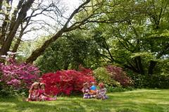 Der Park wird bunt ... (Kindergartenkinder) Tags: grugapark essen kindergartenkinder blüte baum garten blume park frühling annette himstedt dolls margie annemoni sanrike azalee tivi milina kind