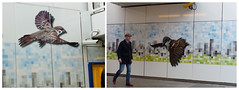"""Muurschildering station Amsterdam Zuid """"It's the little things 20/52"""" (Olga and Peter) Tags: amsterdam muurschildering mural fp115012728 ns stationamsterdamzuid"""