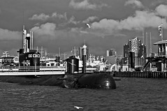 """Port of Hamburg"" © 23. April 2017 by Silva Wischeropp aka Silva Capitana (SILVA CAPITANA) Tags: port portofhamburg hamburg oldport architecture skyline water sea seaside harbour ships boats birds seagull blackandwhite mono monochromeart elbphilharmony houses buildings fishingport industrialbuildings industry fishingindustry hamburgport sky clouds cloudysky cityscape cityshape cityview black white grey modernbuildings marinelandscape landscape fisherport liberty flyingseagulls modernarchitecture livinghouses concerthall maritime marine city town hanseaticcity"