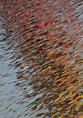 Watercolor (carlos_ar2000) Tags: abstracto abstract color colour onda wave surreal diagonal diagonally puertomadero buenosaires argentina