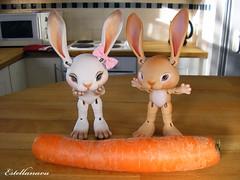 Histoire sans parole : la grosse carotte 3 (Estellanara) Tags: bunny rabbit lapin bjd doll poupée