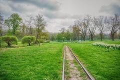 Railway Track Westfalenpark (Christian Passi - Steher82) Tags: westfalenpark railway green schiene way weg hdr tree baum rail natur nature outdoor germany deutschland sonya6000 a6000 track bahn flickr