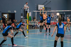 170429_VFF_MU15_Leo-RiedBrig_014.jpg (HESCphoto) Tags: volleyball volleyfinalfour neuchâtel maladière scgymleonhard svktriedbrig jugend damen mu15 schweizermeisterschaft saison1617