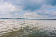 Nostalgia at lake (z.dorighi) Tags: nostalgia sadness sickness emptiness solitude sky clouds cloudy day water landscape lake pond poland goczałkowice nature view