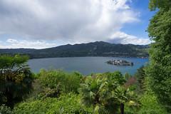 Colors_of_Orta.jpg (jan.remund) Tags: italy orta lake mountains novarra