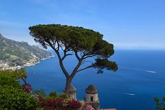 Ravello   *Explore* (sarah_presh) Tags: ravello italy amalfi villarufolo coast coastline blue sea bluesky trees nikond750