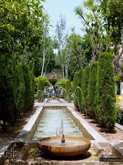 Mallorca '15 - Palma - 05 - S'Hort del Rei 05 (Stappi70) Tags: urlaub spanien shortdelrei pflanzen palmademallorca palma mallorca königlichegärten garten gärten flora e