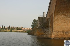 Puente de palmas (Manuel Vázquez Franco-Hernandez Calleja) Tags: extremadura badajoz espaa