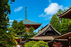 Koyasan, Wakayama Prefecture, Japan (David Ducoin) Tags: asia boudhism japan nature religion roof shinto shrine temple koyasan wakayamaprefecture jp