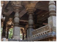 Turned and Staid (vatsaraj) Tags: halebidu halebeedu ancient temple pillar stonework stonetemple stonearchitecture hoysala hoyasala nikon d300 vatsaraj cvatsaraj