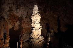 2017_04_29_IMG_9999_444 (brunodaronne) Tags: ardèche aven orgnac dorgnac grand site france souterrain photo stalagmite stalagtite découverte grotte cave