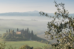 A9905765_s-2 (AndiP66) Tags: villabelvedere villa belvedere sanquiricodorcia sanquirico dorcia siena pienza valledorcia valle toscana tuscany italien italy sony alpha sonyalpha 99markii 99ii 99m2 a99ii ilca99m2 slta99ii tamron tamronspaf70200mmf28dildif tamron70200mm 70200mm f28 amount andreaspeters