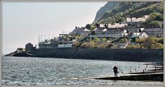 Fisherman Friend (david.hayes77) Tags: class158 atw arrivatrainswales llanfairfechan northwales fisherman 2017 1d33 a55 fishing