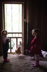130| 365 (trois petits oiseaux) Tags: 365 light lowlight breakfast kids childhood farm chickens eggs