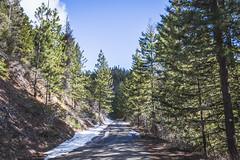 Half a mile to Old Blewett Pass (johnwporter) Tags: hiking scramble cascades northcascasdes mountains nationalforest wenatcheenationalforest wenatcheemountains roughhousemountain 徒步 爬行 喀斯喀特山脈 北喀斯喀特山脈 山 國家森林 韋納奇國家森林 韋納奇山脈 毆鬥山 atx116prodx tokinaaf1116mmf28 wideangle wideanglelens 廣角 廣角鏡