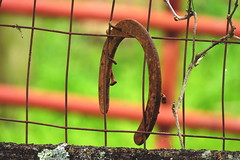 And then the luck ran out..... (Hayseed52) Tags: horse shoe luck fence wire gate red nature virginia horseshoe nails