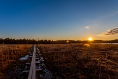 Kurjenrahka National park (Mikke.B) Tags: finland canon 5d mkiii kurjenrahka national park swamp sunset trees forest lake 1740mm photography