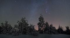 Frozen pines and Winter Milky Way , Crimea (Mike Reva) Tags: astronomy astrophoto astrophotography astro stars sky stargazing stillness samyang24 starrynight night nature nightsky nghtsky nightscape or astrometrydotnet:id=nova2072863 astrometrydotnet:status=failed