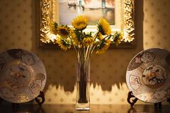 Sunflowers in a Vase (WilliamND4) Tags: sliderssunday hss nikond810 flowers sunflower