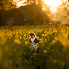 colza (yellow fields) (iwona_podlasinska) Tags: colza rzepak field girl sun sunset light iwona podlasinska podlasińska poland