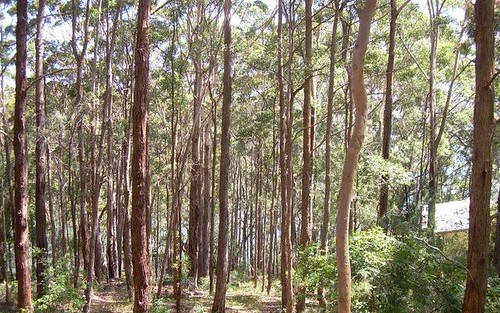 Lot 28, 25 New Forster Rd, Smiths Lake NSW 2428