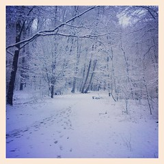 Narnia (luigipezzullo) Tags: luigipezzullo nürnberg tiefgraben tiefgrabennürnberg mittelfranken franken bayern outside outdoor out natura nature natur narnia neve schnee snow 2015