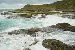 Wave Action at Frazer Park (Paul Hollins) Tags: catherinehillbay newsouthwales australia frazerpark seascape nikond750 nikon1635mmf4 ocean waves rocks outdoor
