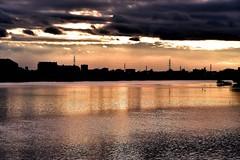 「川面に映る天使のはしご(先週日曜撮影) ~市川市国府台・里見公園下の江戸川べり」 Sunset and Clouds from Edogawa Riverside (Taken Last Sunday) Location:Konodai,Ichikawa city,Chiba,Japan  こんばんは。 こないだの日曜に里見公園下の江戸川べりで撮った夕景の続きです。  この日、夕日は早いうちに雲に隠れてしまいしたが、しばらくすると雲の下から陽光が漏れてきて、いわゆる「天使のはしご(薄明光線)」が現れまし
