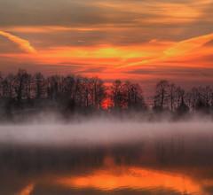 Going nowhere (Robyn Hooz) Tags: arquà lago pond pool nebbia fog haze sun sole sunrise trees dream travel alone