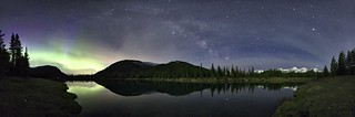 3AM Milky Way Forget Me Not Panorama