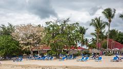 Grand Bahia Principe (yann.dimauro) Tags: hispaniola république antilles caraibe caraibes dimauro dominicain dominicaine yann