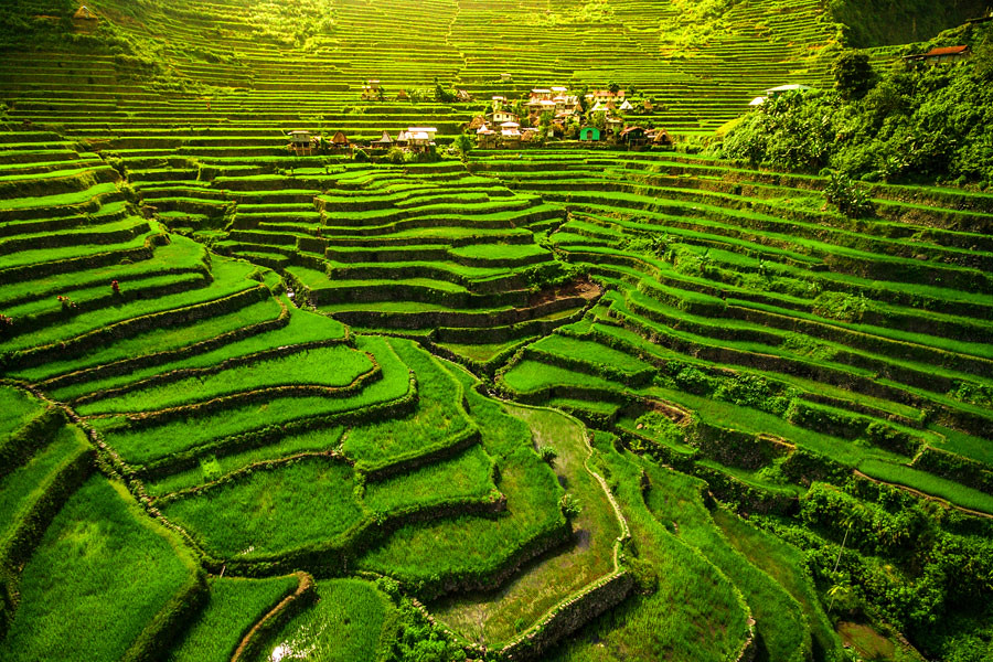 Amazing rice field terraces in north Luzon Philippines