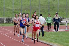 Giorgia Marchini