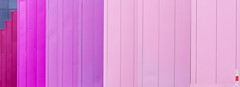 Wider Purple (BigRedTroll) Tags: abstract bold color england minimal northampton pastel pink purple shades stripes texture