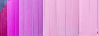 Wider Purple