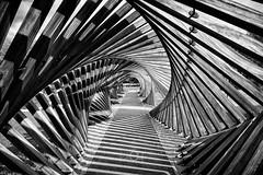 Hypnotic (CrËOS Photographie) Tags: carré square courbe curve perspective graphisme graphism graphique graphic minimalisme minimalism architecture wood bois spirale spiral