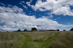 Approaching Rathgall Ringfort (backpackphotography) Tags: carlow ireland backpackphotography ringfort hillfort rathgall rathgallringfort rathgallhillfort rath bronzeage medieval