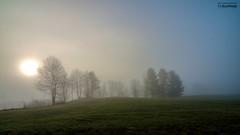 Foggy sun rise_HDR (le Brooklands) Tags: abercorn borderfx brume d7000 fog foggy hdr matin morning printemps québec sigma1224mm spring