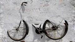 "Omaggio al "" Giro"" (Luc1659) Tags: giroditalia2017 giro bike ilpostino sicilia salina troisi fatica sudore sykkel"