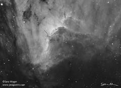 Pelican and Herbig Haro 555 in mono (Sara Wager (www.swagastro.com)) Tags: astro astrophotography astronomy astrodon astronomia astrology cosmos cosmology cosmic deepspace deepsky deepskydso dso emission emissionnebula herbigharo herbig hh555 interstellar nebula nebulosity nebulae mesu mesu200 space skyatnight sky skies universe telescope tmb tmb1521200 qsi683 qsi sarawager swagastro wwwswagastrocom mono hydrogenalpha blackandwhite blackwhite