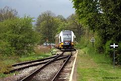 Kłodzko Zagórze (michal_5273) Tags: kłodzko zagórze pociąg train vlak sa134 sa134004 koleje dolnośląskie kd stacja kolej