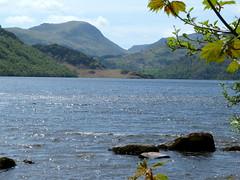 Beautiful Cumbria in May (Deida 1) Tags: cumbria uk mountains lakedistrict trees