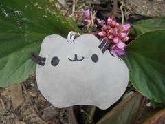 585 (en-ri) Tags: pusheenthecat gatta miao nero grigio verde fiorellini little flowers sony sonysti